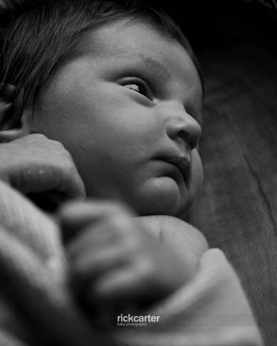 Newborn Baby Photography Chandlers Ford