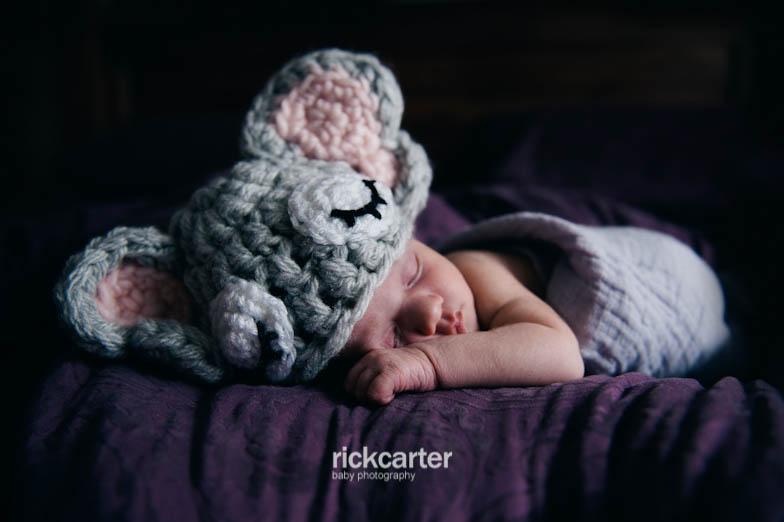 Newborn Portrait Photographer